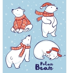 Polar Bears collection in red sweater scarf and vector image