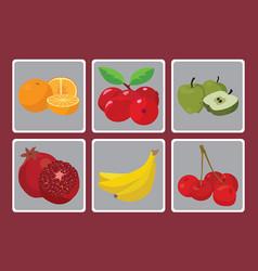 oranges bananas peaches apples grenades vector image vector image