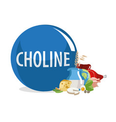 Choline vector