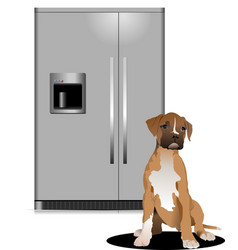 domestic refrigerator with unit for cold water vector image