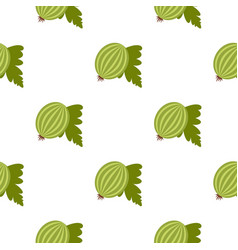 fresh green gooseberry with leaves pattern flat vector image