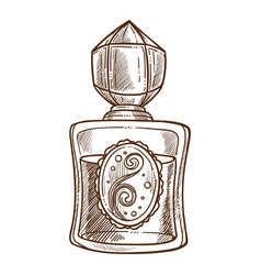 perfume or toilet water in vintage flacon aroma vector image