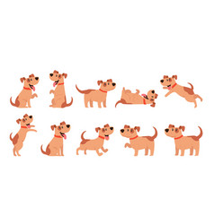 Set of cute dogs pets domestic animals walking vector