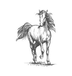 White horse freely running portrait vector image