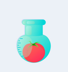 Genetic engineering gmo tomato in test tube vector