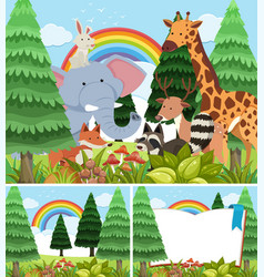 three scenes of forest with wild animals vector image
