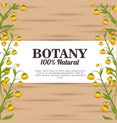 Botany 100 percent natural vector