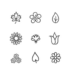 floral icon set flowers and leaves nature line vector image
