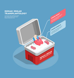 Human organs isometric composition vector