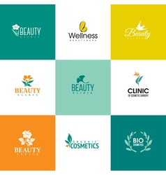 Set of beauty and flowers logo templates vector image