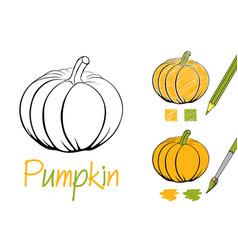 simple pumpkin black and white vector image