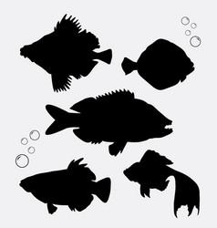fish animal silhouette vector image