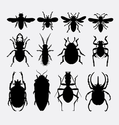 Insect bug small animal silhouette 2 vector image vector image