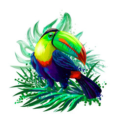 Bright tropical bird toucan sits in foliage vector