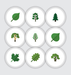 flat icon nature set of alder wood tree and vector image