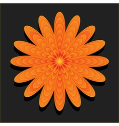 Orange flower on black background vector