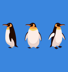 Penguin in different angles vector