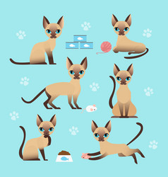 set cute cat in different vector image