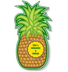 organic pineapple vector image
