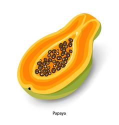 Sliced papaya cartoon organic vector