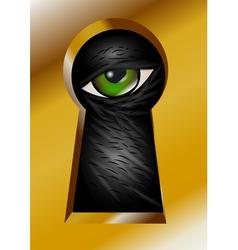 keyhole and eye vector image vector image
