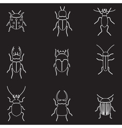 Bugs and beetles outline icons set eps10 vector