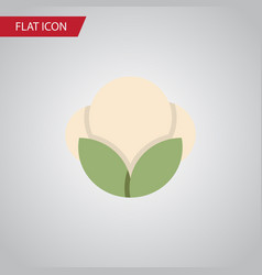 isolated fluffy flat icon fiber element vector image