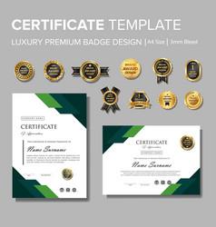 Modern green certificate with badge multipurpose vector