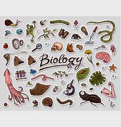 scientific laboratory in biology icon set of vector image