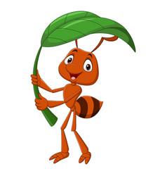 Cute ant cartoon holding green leaf vector