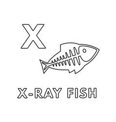 Cute cartoon animals alphabet x-ray fish vector