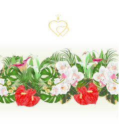 Floral border seamless background bouquet vector