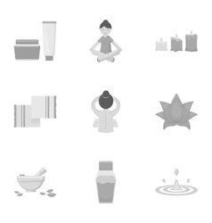 Spa set icons in monochrome style Big collection vector image
