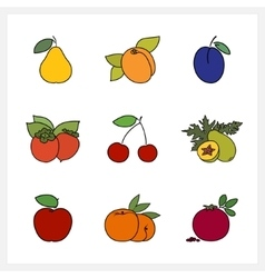 Fruit Growing on a Trees vector