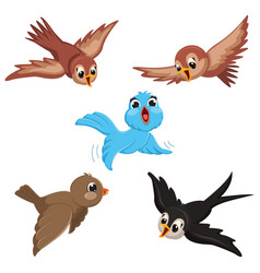 Of cartoon birds vector