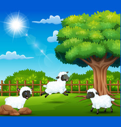 The sheeps farem are enjoying nature by the cage vector