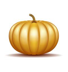orange autumn pumpkin icon vector image