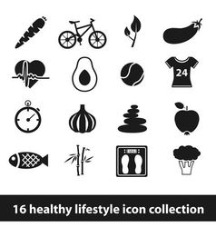 16 healthy lifestyle icon collection vector image