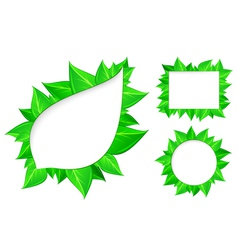 abstract fresh green leaves vector image