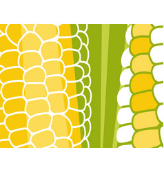Abstract vegetable design corn on cob vector