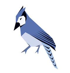 Blue jay flat vector