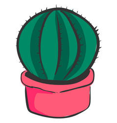 cactus in pink pot on white background vector image