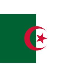 Flag rectangular shape vector