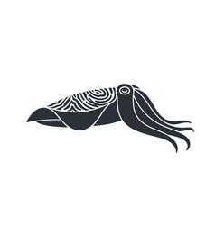 Pharaoh cuttlefish vector