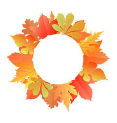 wreath from autumn leaves of maple oak chestnut vector image