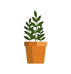 Flower icon logo in pot nature spring plant vector image vector image