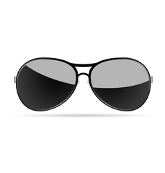 sunglasses art on a white background vector image