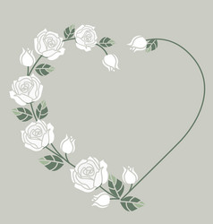 background with white roses vector image