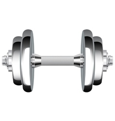 Metal dumbbells Chrome Weights vector