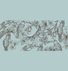 tropic parrot card line art exotic pattern vector image